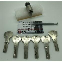 Deni-cylindre européen CITY ISEO IS R6 avec 6 clés.
