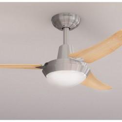 Ventilateur de Plafond avec Lumière